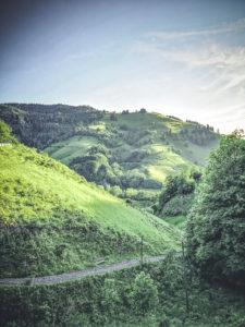Blick auf den Gipfel des Belchen im Hochschwarzwald
