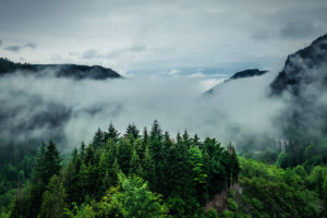 Blick auf das wolkenverhangene Höllental im Schwarzwald