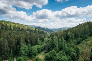 Blick von der Staumauer in das unten liegende Tal und die Berge des Schwarzwalds