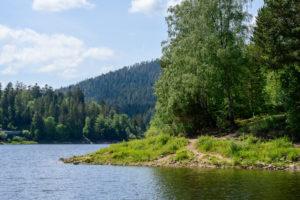 Blick auf einen See mit Bäumen und Hügeln