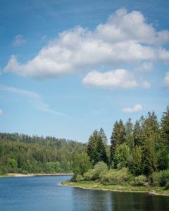 Blick auf die Schwarzenbach Talsperre mit Wasser und Bäumen