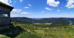 Panoramablick über die Hügel des Nordschwarzwalds an der Schweizerkopfhütte