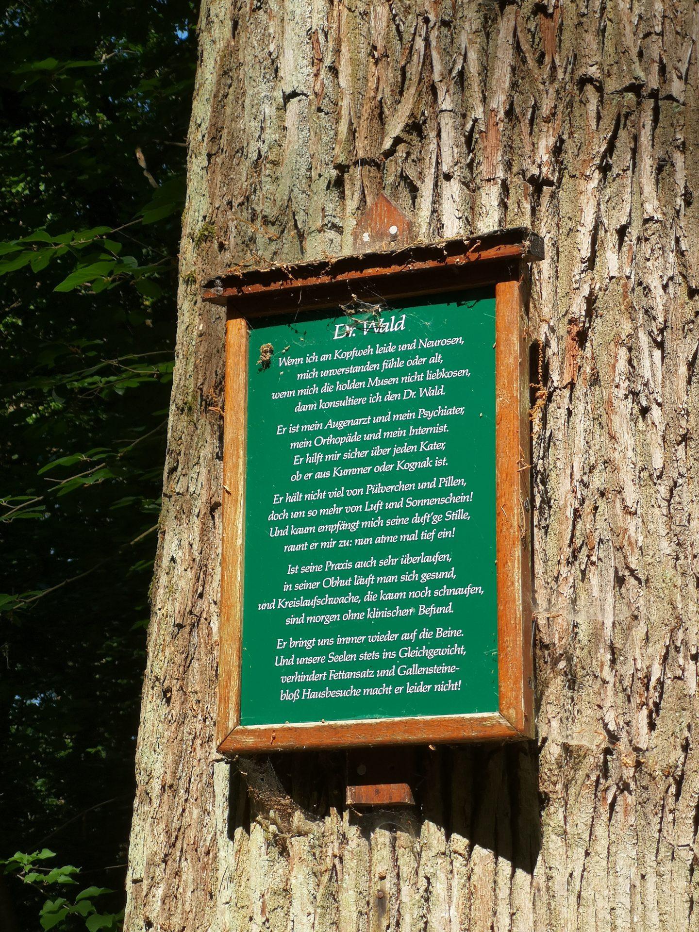 Tafel mit einem Gedicht an einem Baumstamm