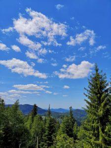 Bäume, Hügel und Wolken am Himmel im Nordschwarzwald