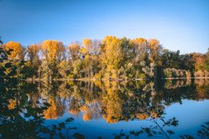 Blick auf den Erlachsee auf dem sich die herbstlichen Bäume spiegeln